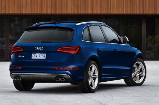 2013 Audi SQ5 TFSI Rear Side View